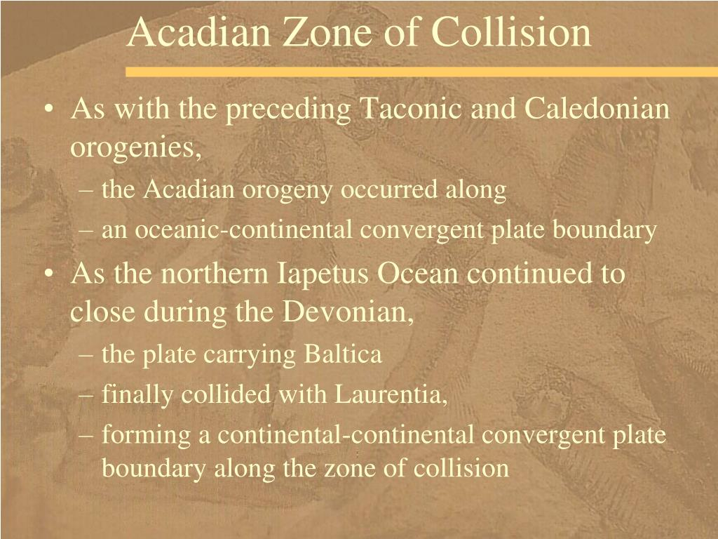Acadian Zone of Collision