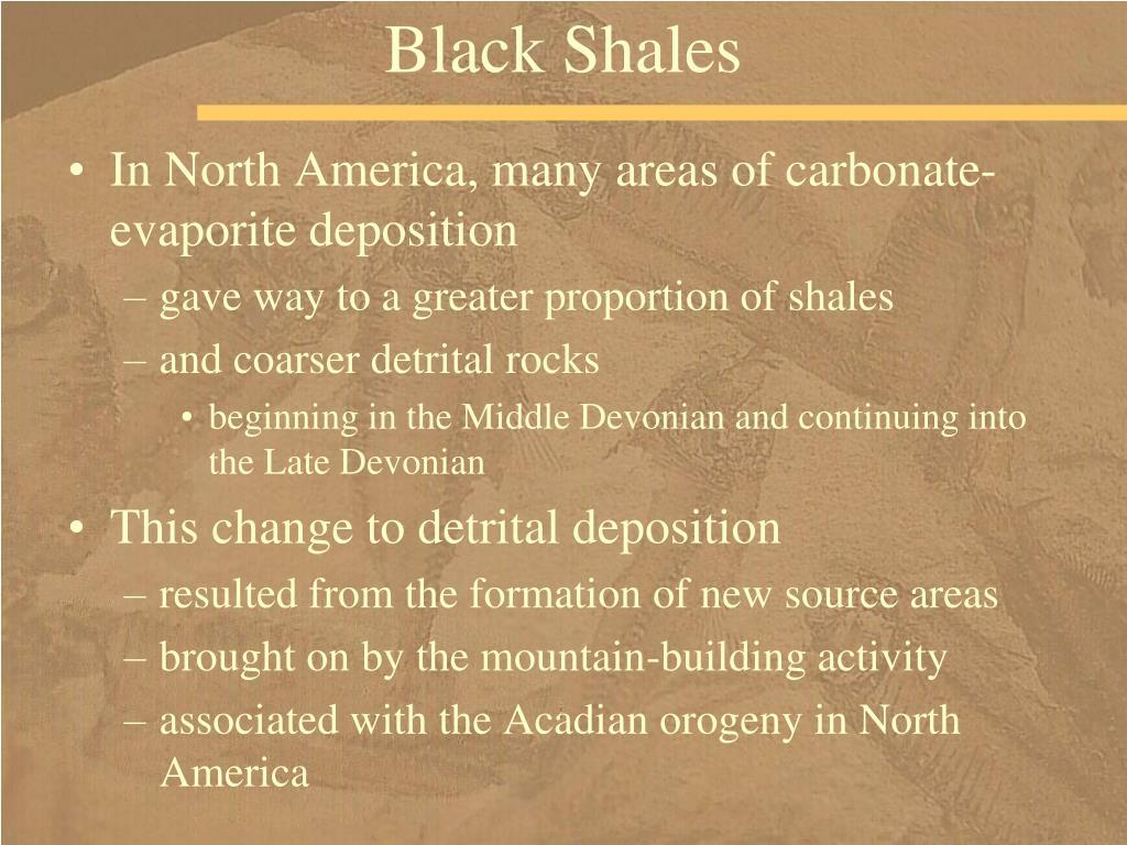 Black Shales