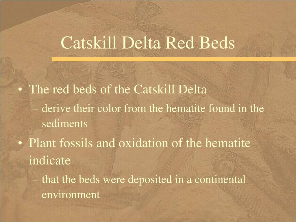 Catskill Delta Red Beds