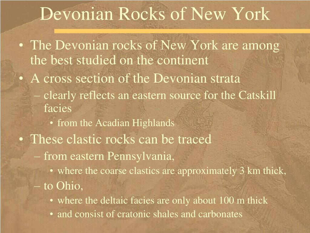 Devonian Rocks of New York