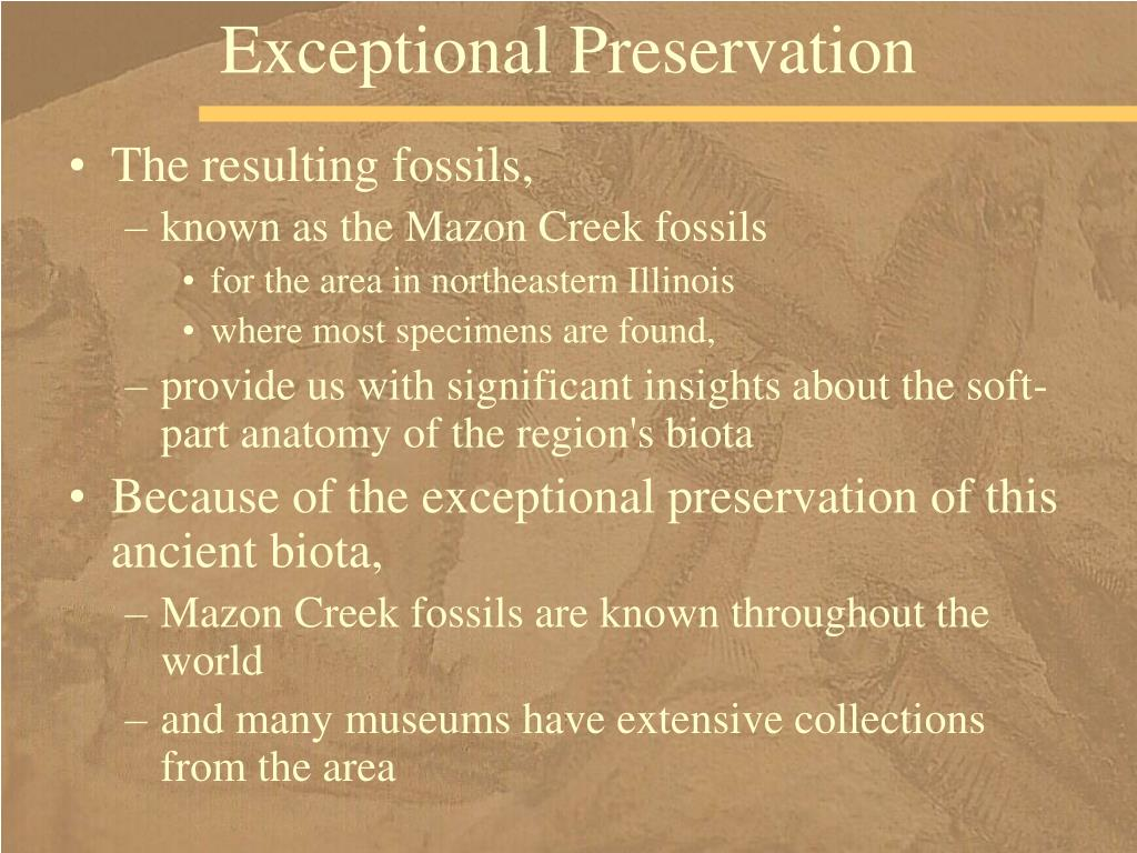 Exceptional Preservation