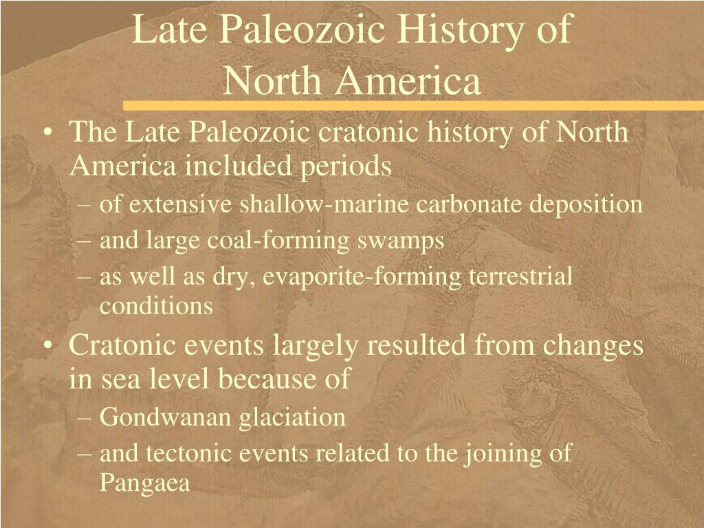 Late Paleozoic History of