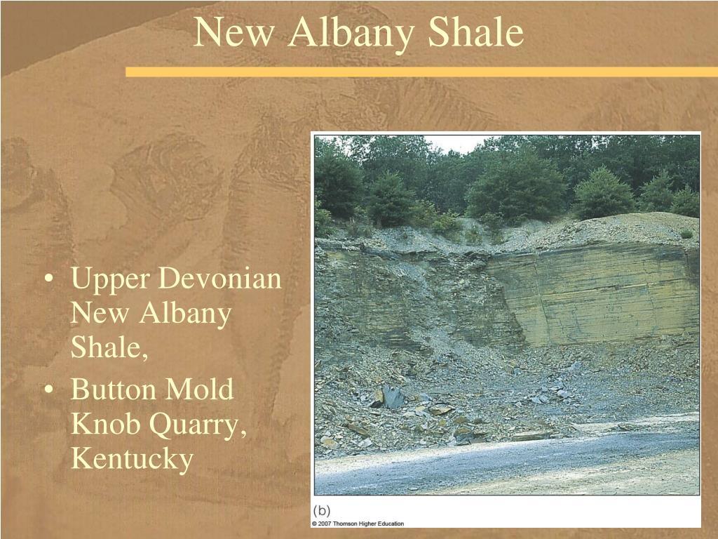 New Albany Shale