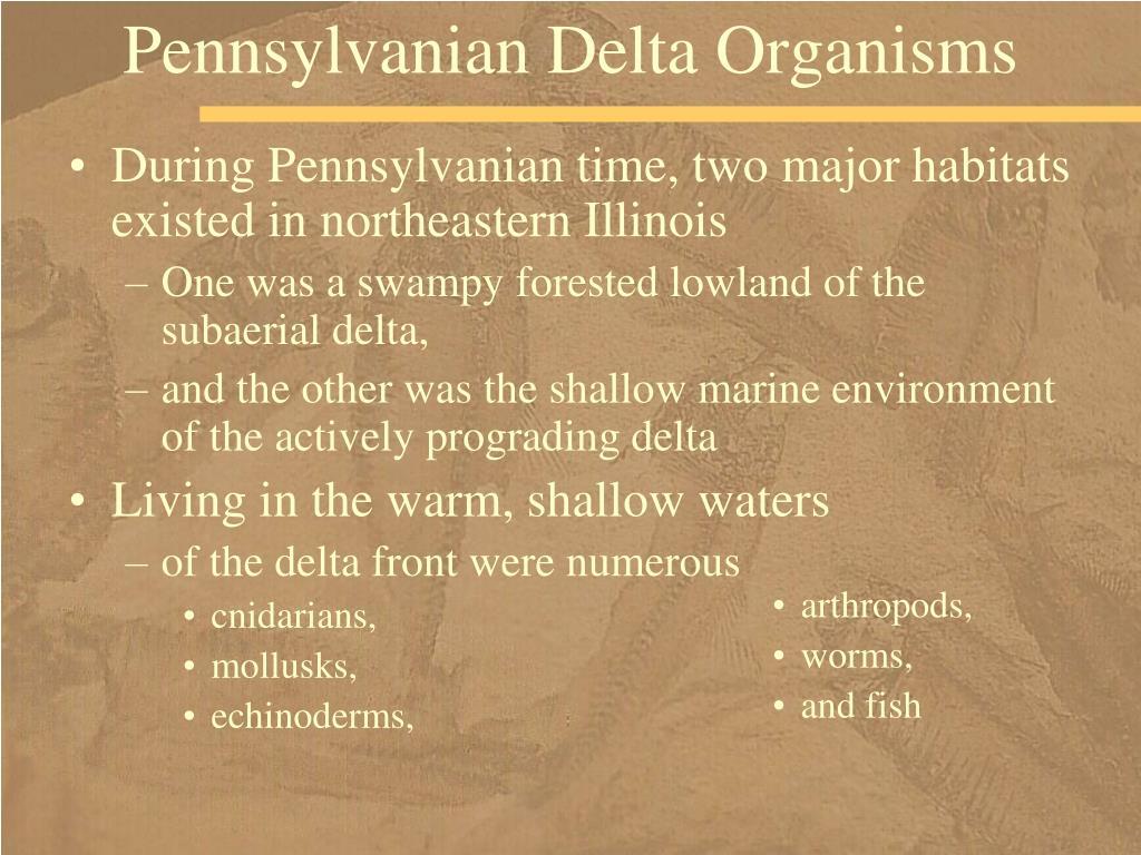 Pennsylvanian Delta Organisms