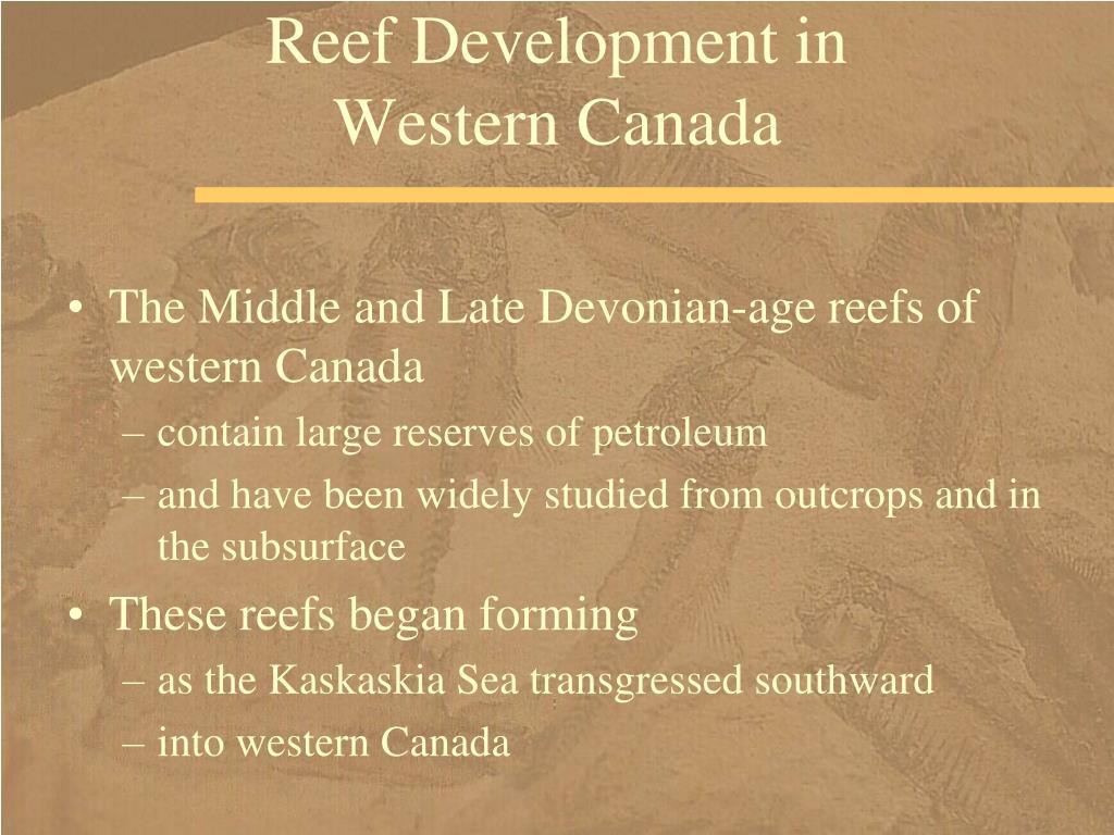 Reef Development in