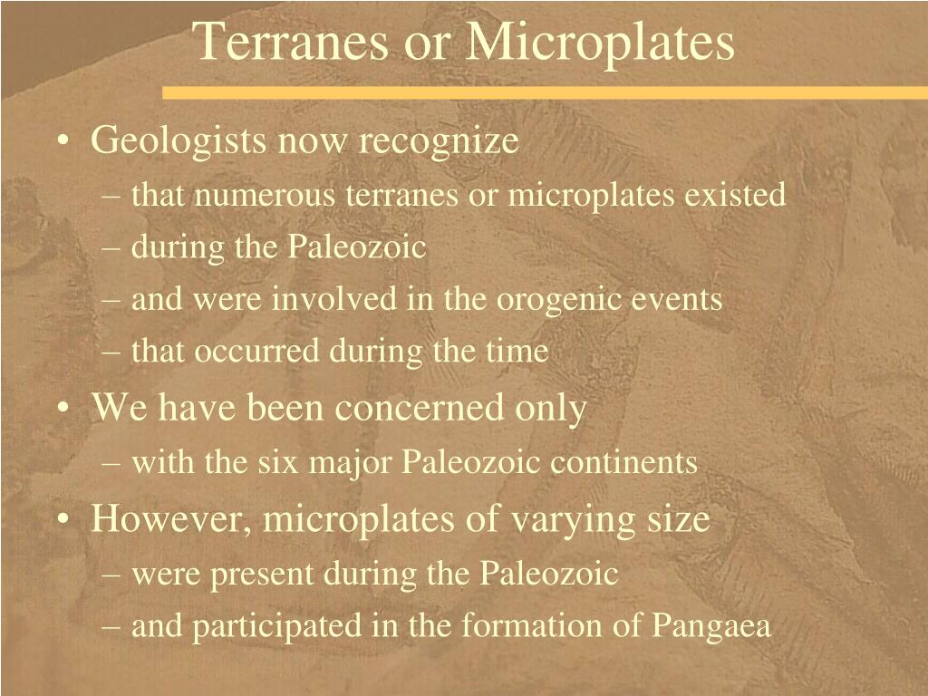 Terranes or Microplates