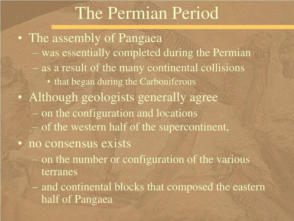 The Permian Period