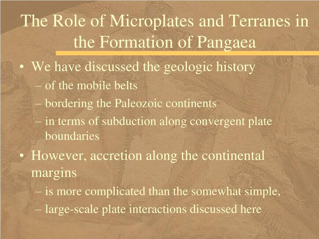 The Role of Microplates and Terranes in the Formation of Pangaea