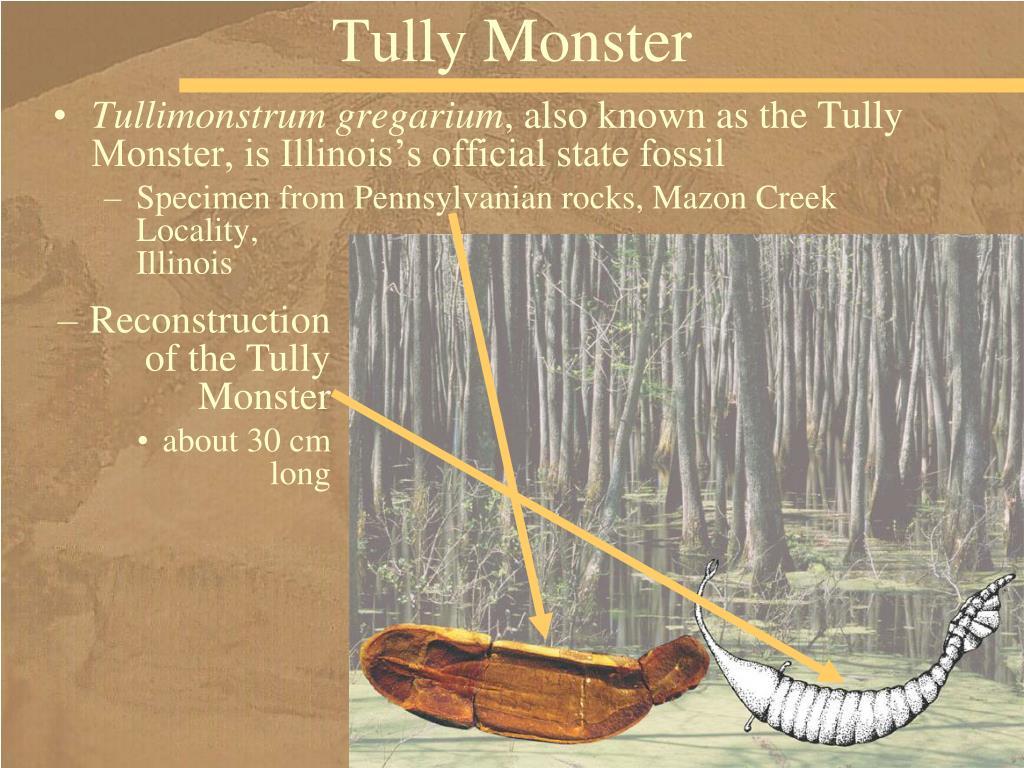 Tully Monster