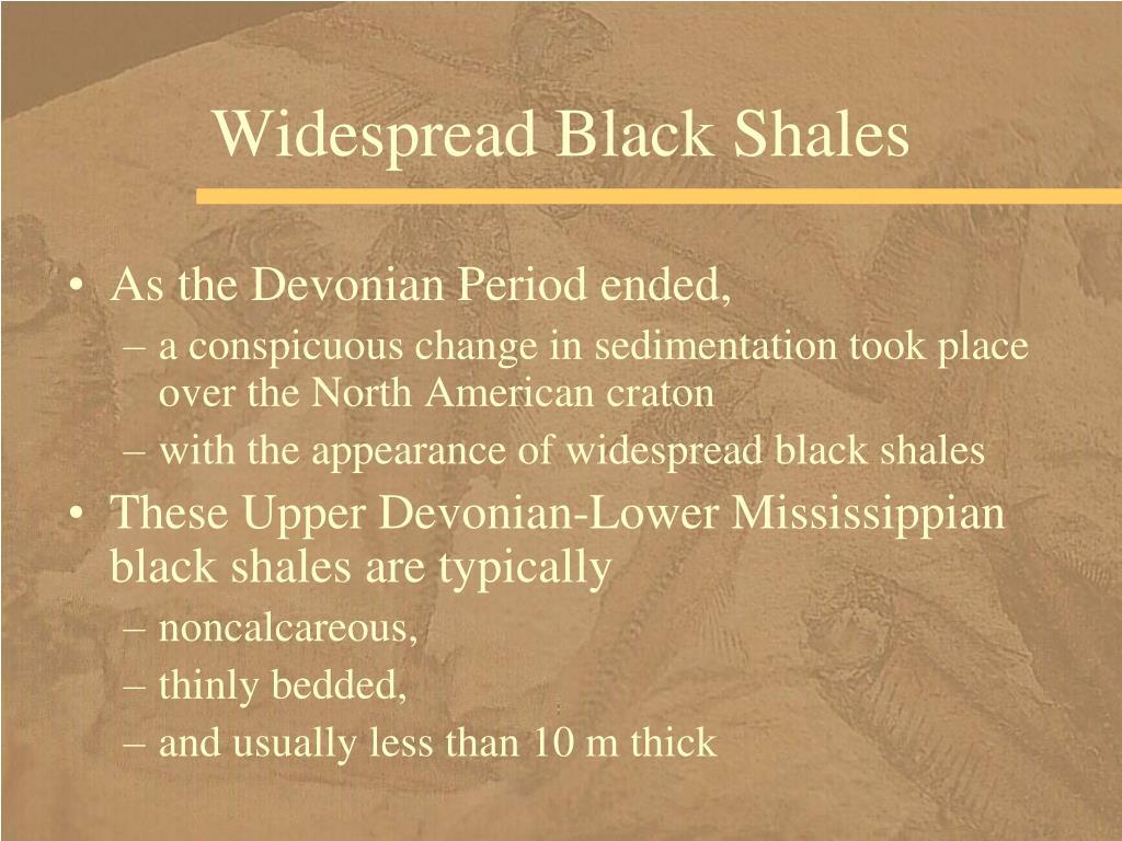 Widespread Black Shales