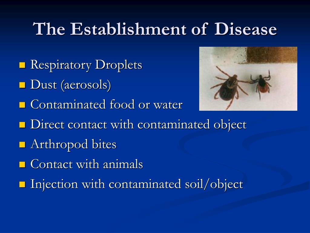 The Establishment of Disease