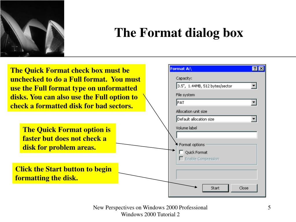 The Format dialog box