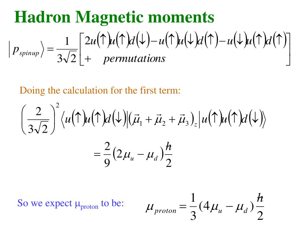 Hadron Magnetic moments