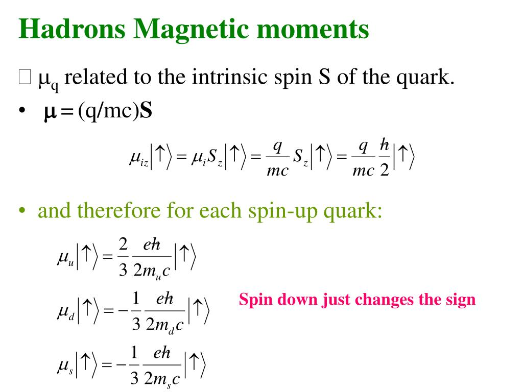 Hadrons Magnetic moments