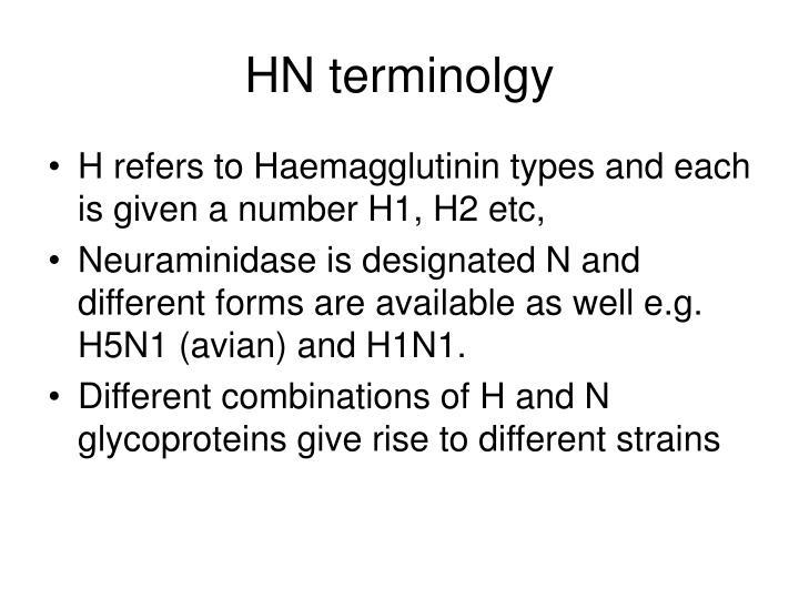 HN terminolgy