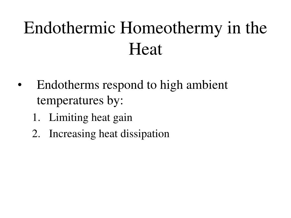 Endothermic Homeothermy in the Heat