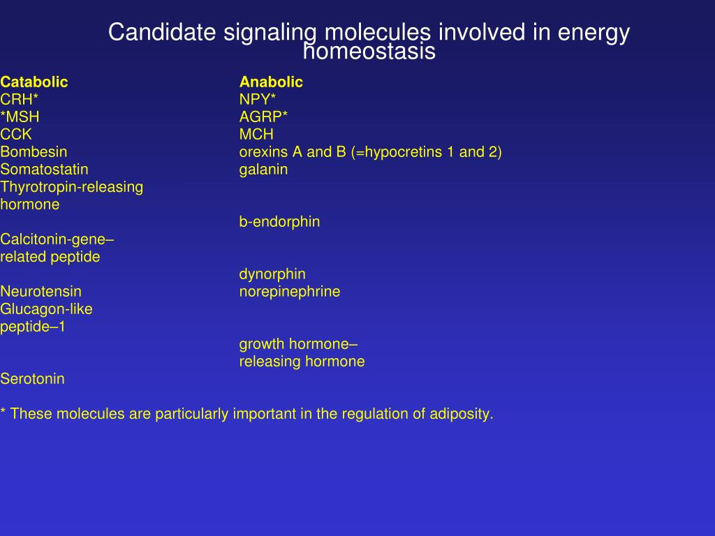 Candidate signaling molecules involved in energy homeostasis