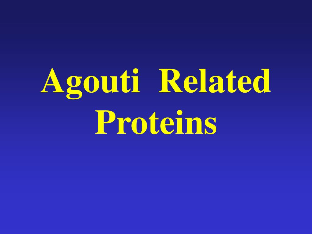 Agouti  Related Proteins
