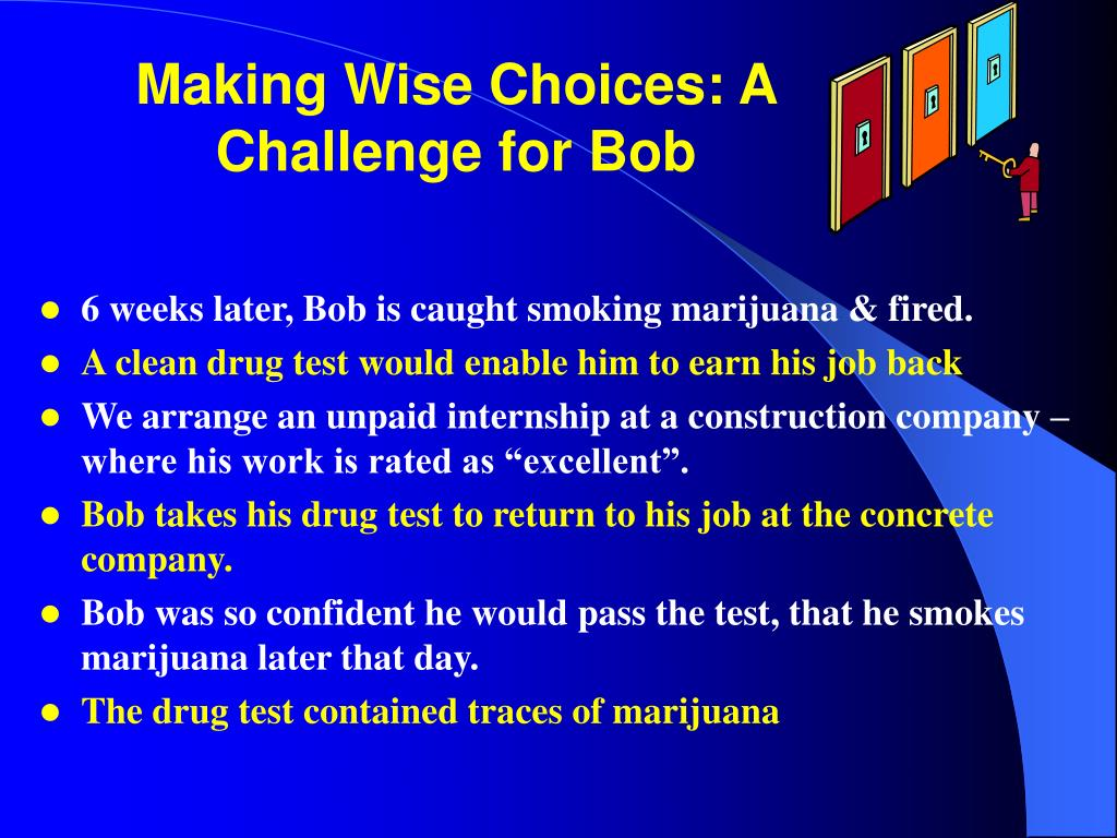 Making Wise Choices: A Challenge for Bob