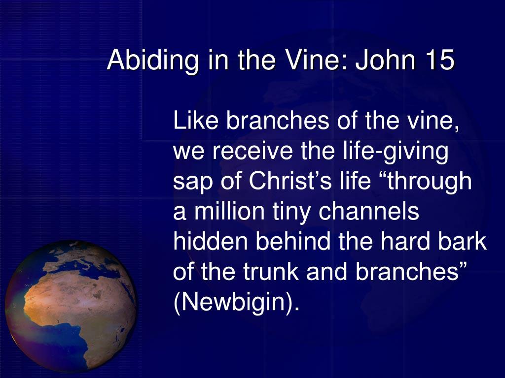 Abiding in the Vine: John 15
