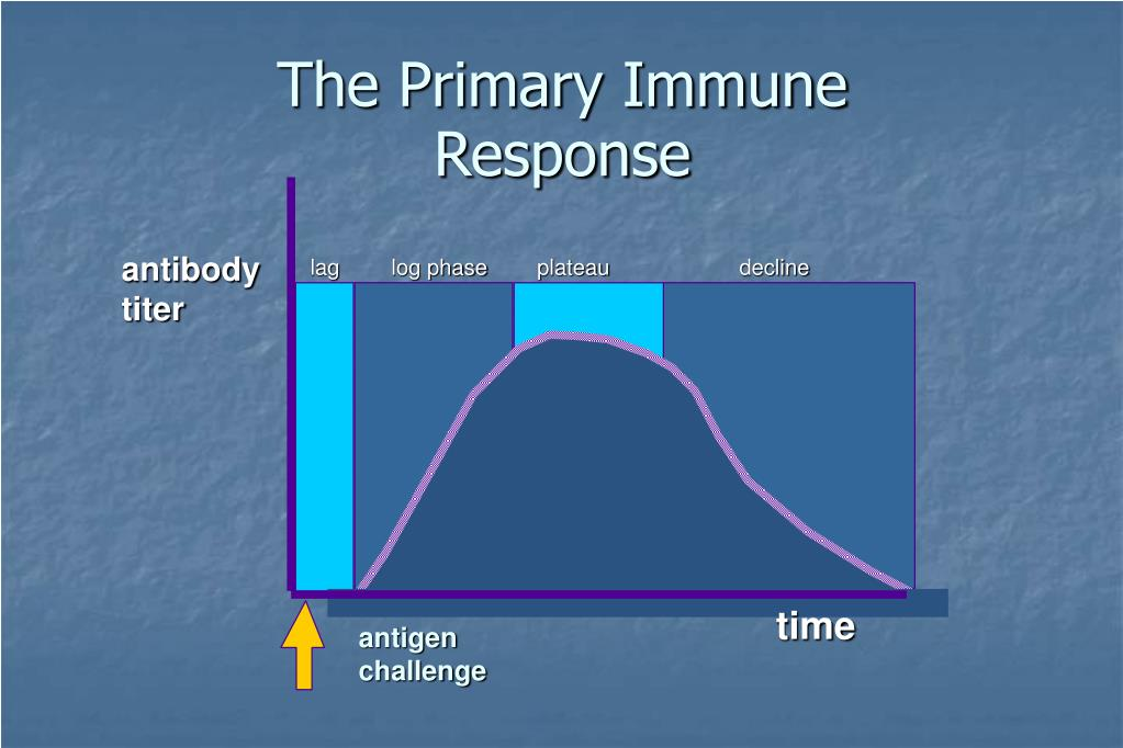 The Primary Immune Response