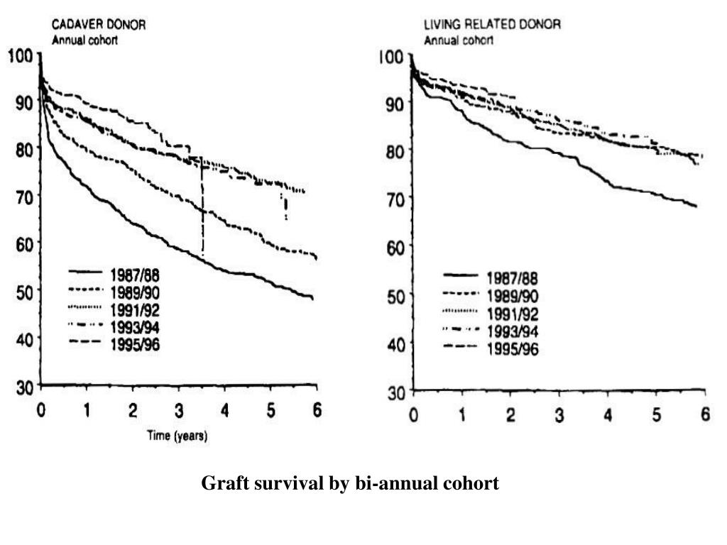 Graft survival by bi-annual cohort