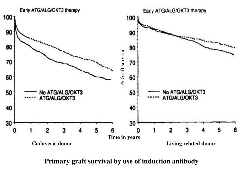 % Graft survival