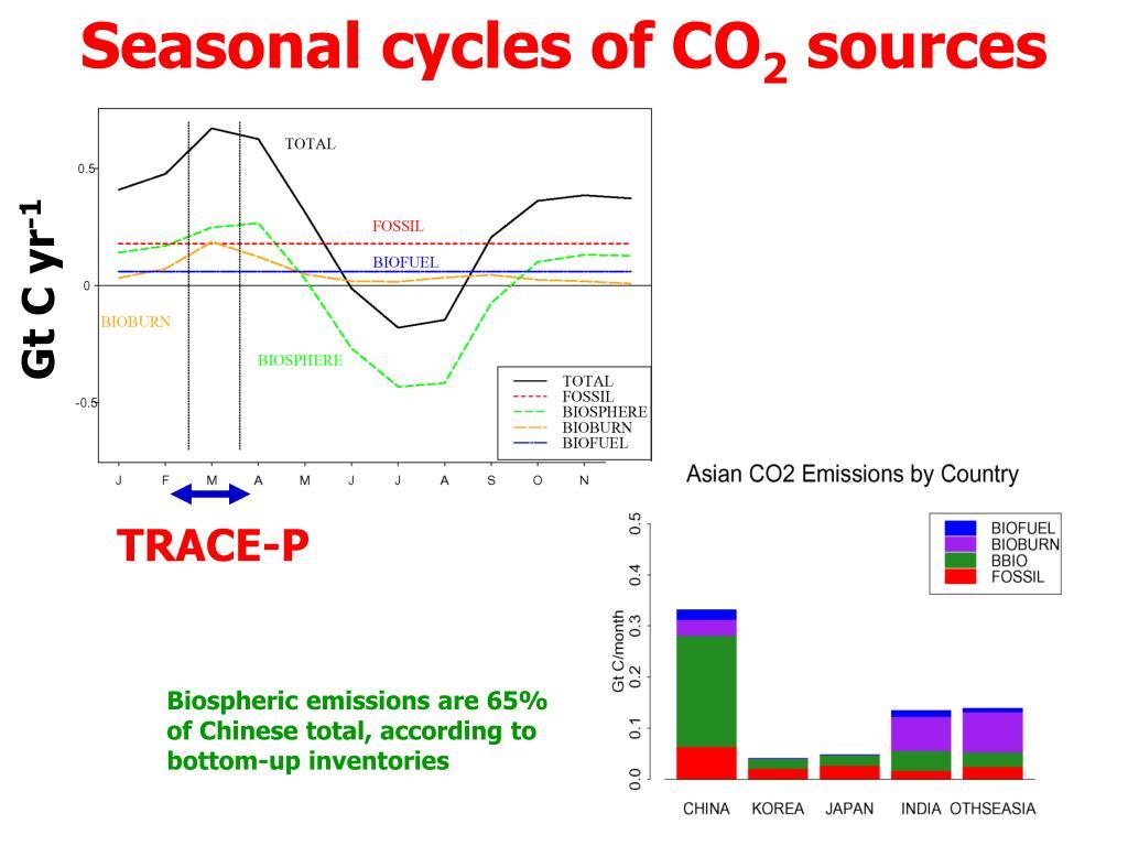 Seasonal cycles of CO