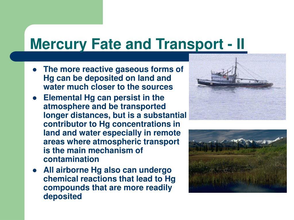 Mercury Fate and Transport - II
