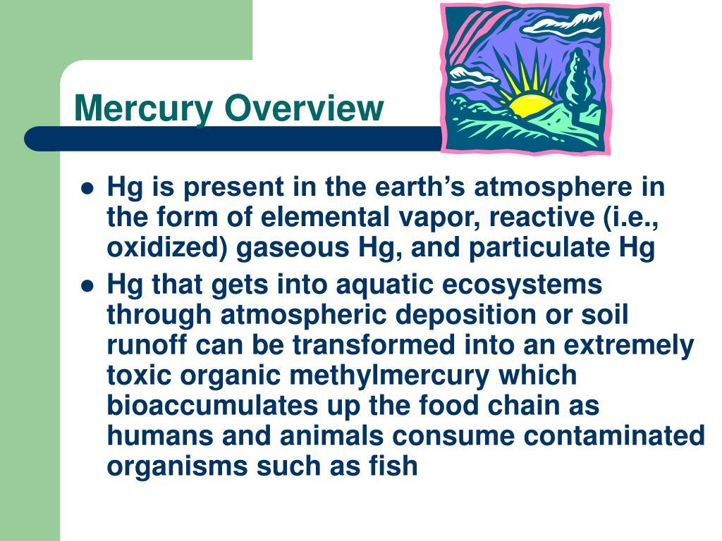Mercury Overview