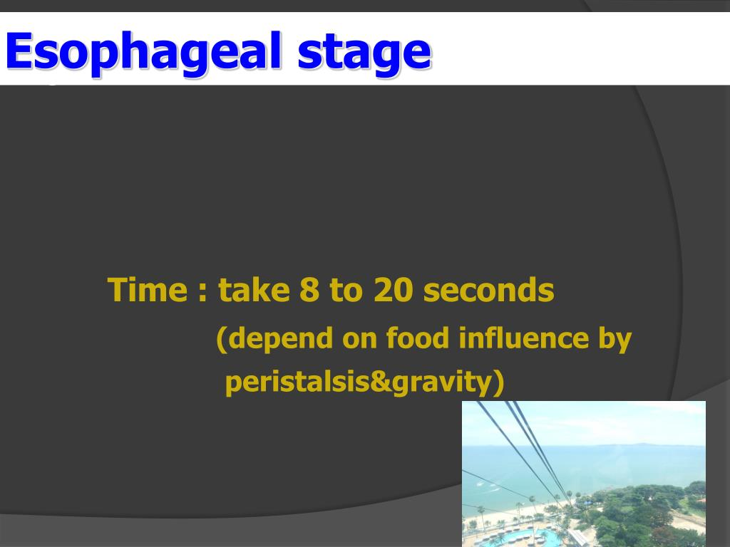 Esophageal stage