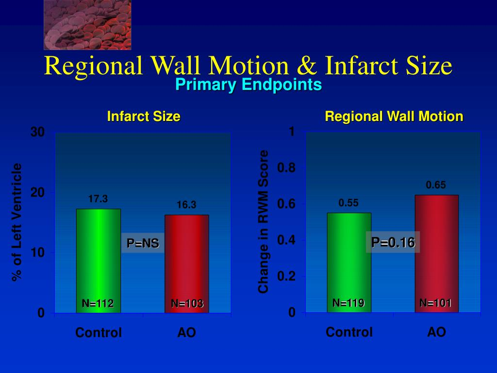 Regional Wall Motion & Infarct Size