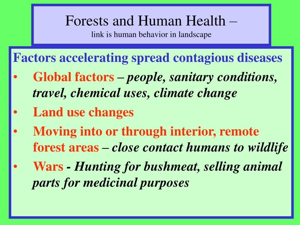 Forests and Human Health –