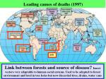 leading causes of deaths 1997