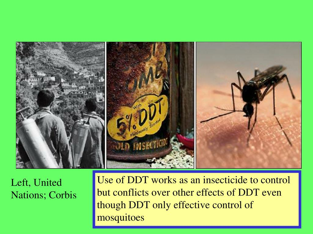 Use of DDT works as an insecticide to control but conflicts over other effects of DDT even though DDT only effective control of mosquitoes