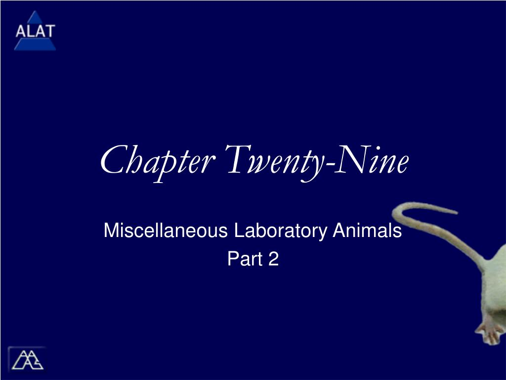 chapter twenty nine