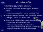 woodchuck diet