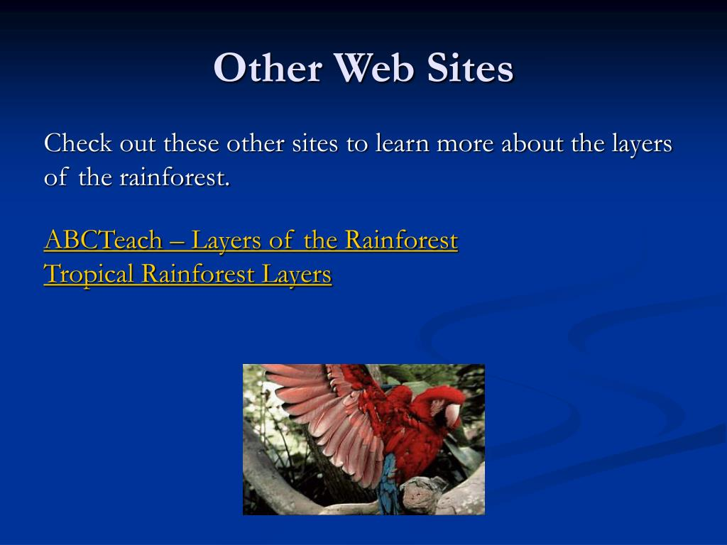 Other Web Sites