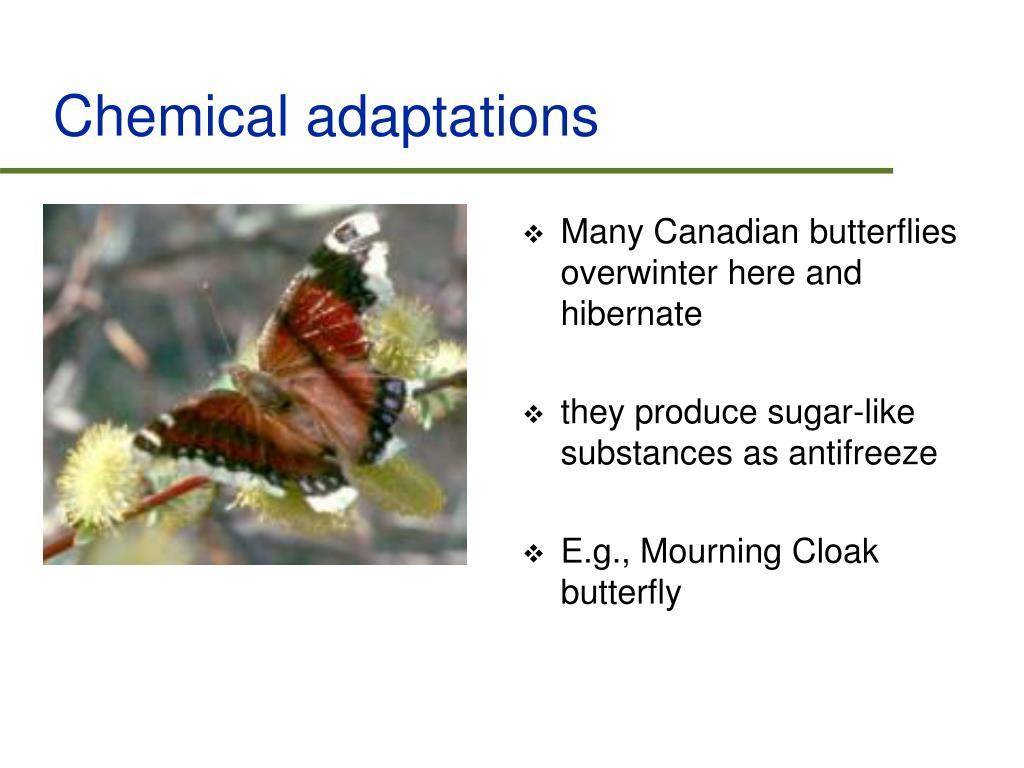 Chemical adaptations