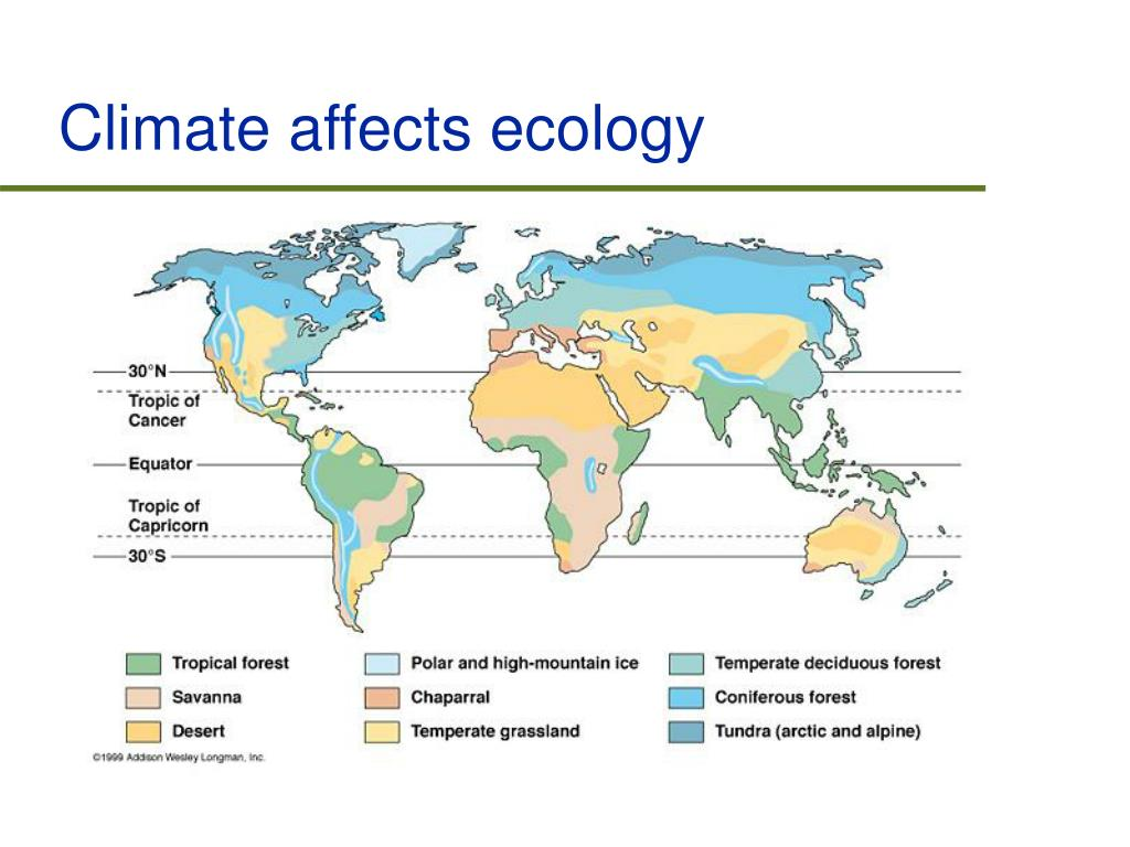 Climate affects ecology