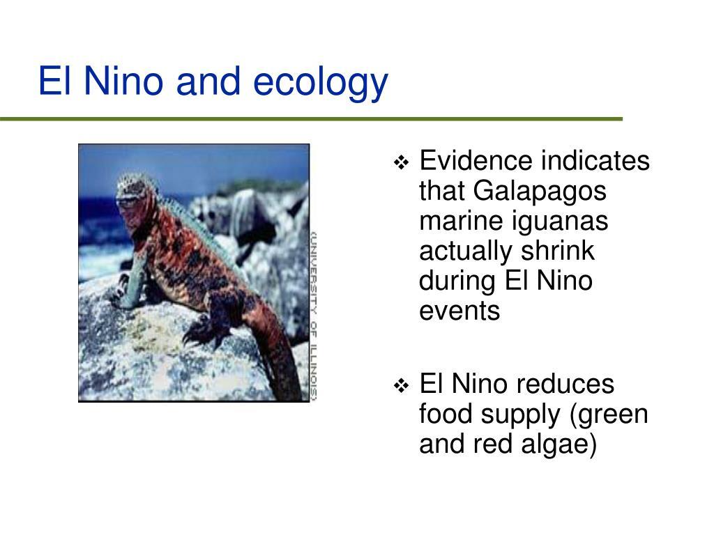 El Nino and ecology