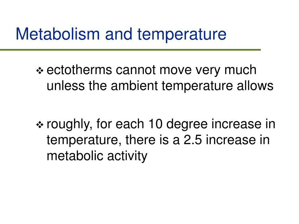 Metabolism and temperature