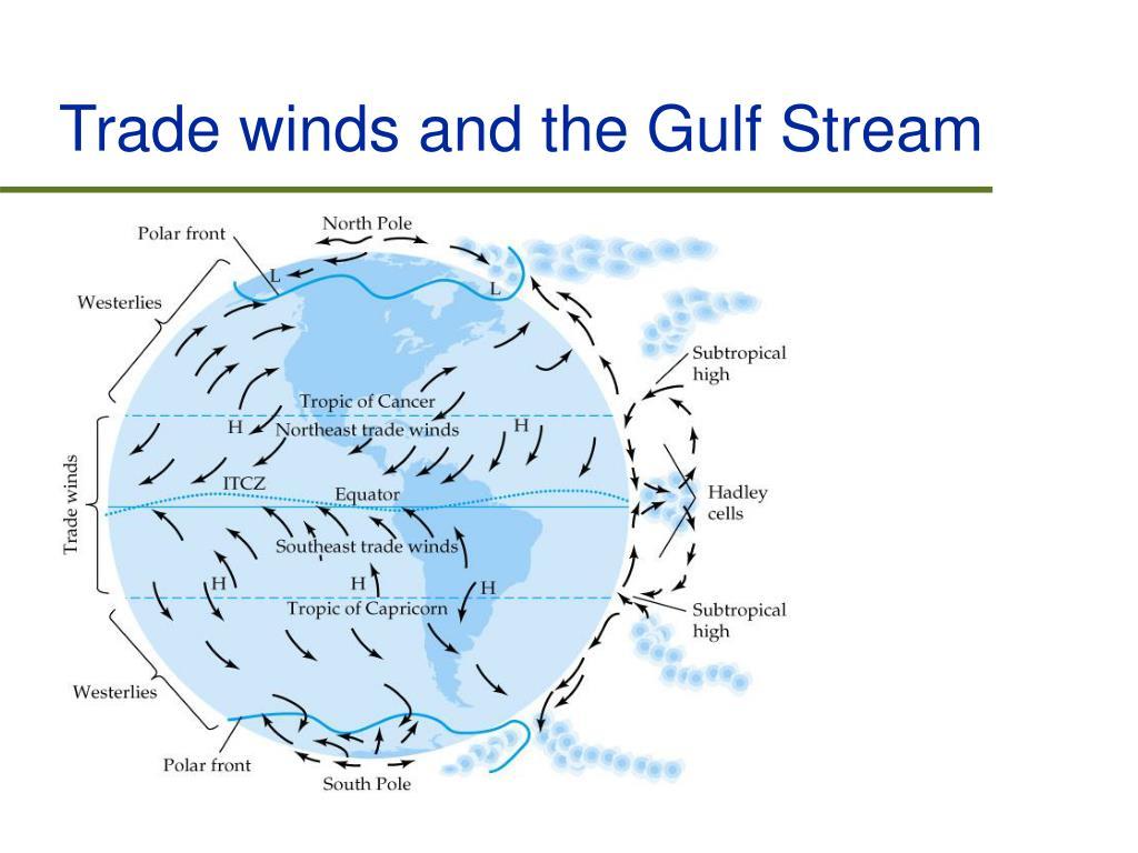 Trade winds and the Gulf Stream