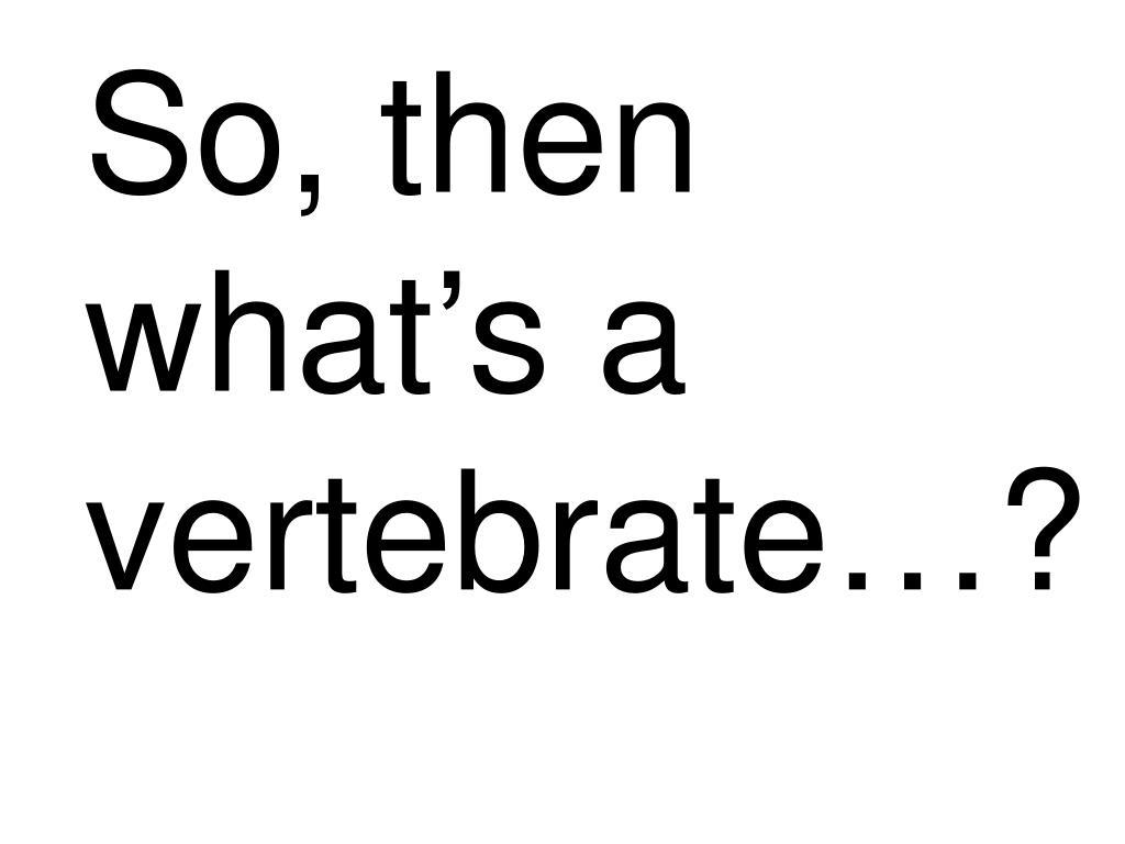 So, then what's a vertebrate…?