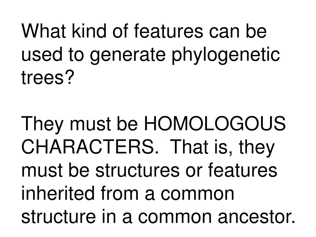 What kind of features can be used to generate phylogenetic trees?