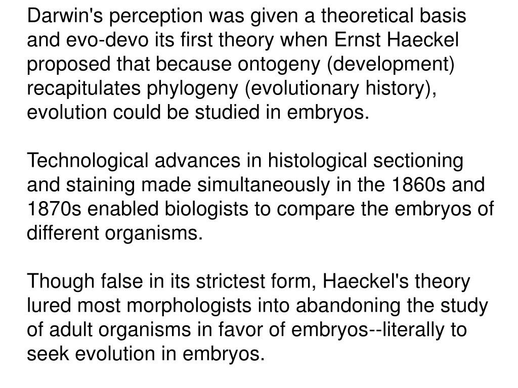 Darwin's perception was given a theoretical basis and evo-devo its first theory when Ernst Haeckel proposed that because ontogeny (development) recapitulates phylogeny (evolutionary history), evolution could be studied in embryos.