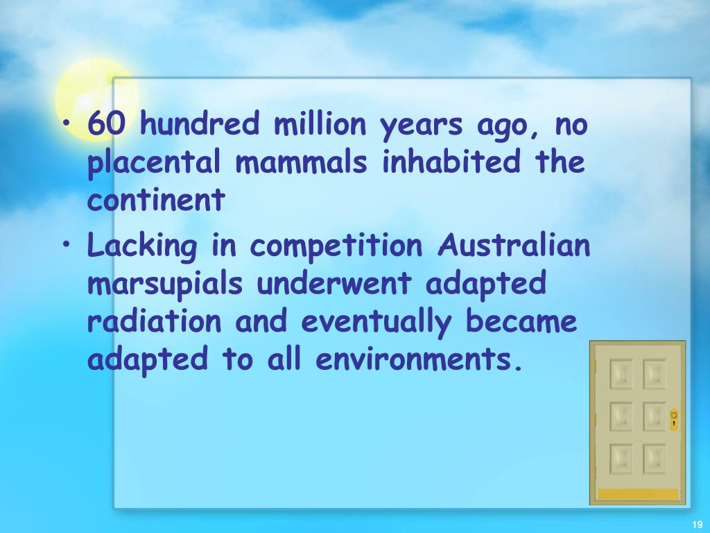 60 hundred million years ago, no placental mammals inhabited the continent