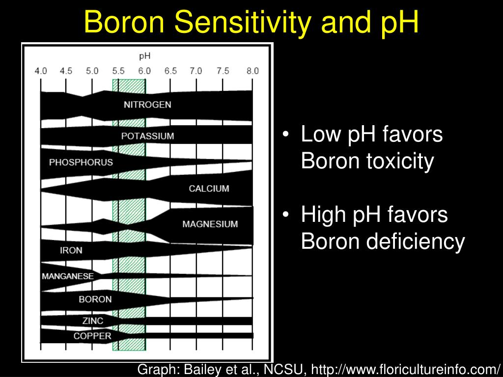 Boron Sensitivity and pH