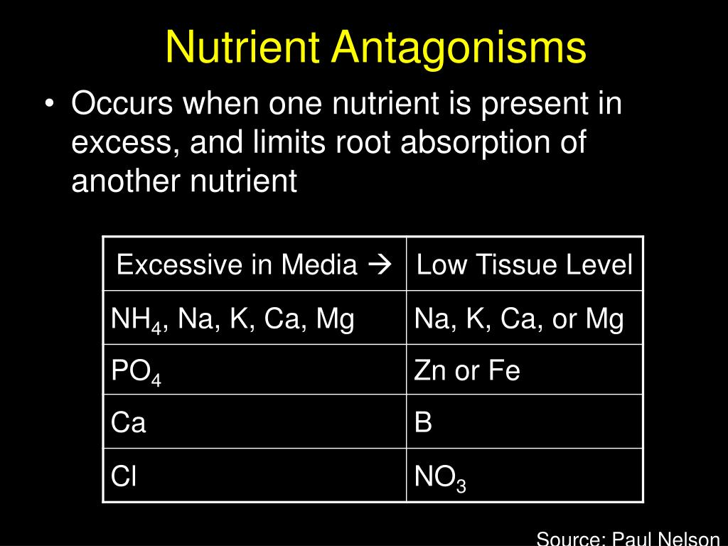 Nutrient Antagonisms