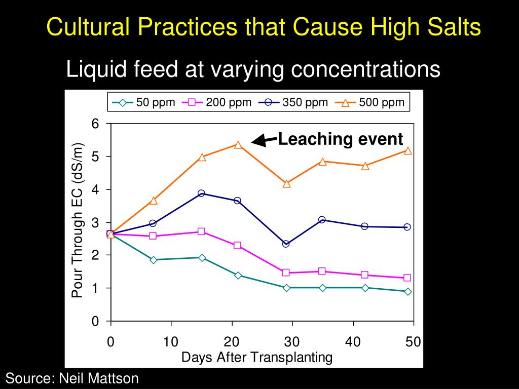 Cultural Practices that Cause High Salts